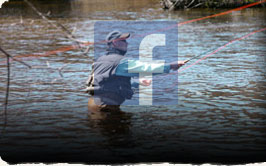 Picture of a man fly fishing the Skeena River